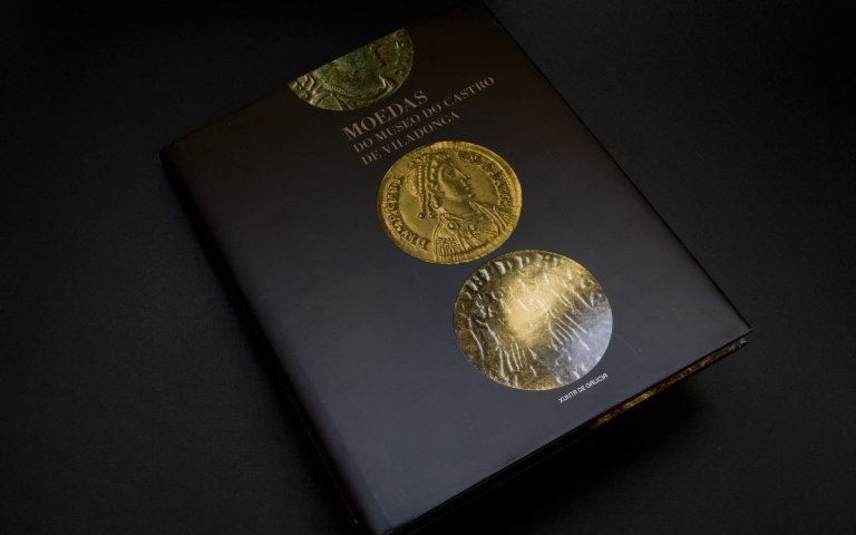 The Museum of The Castro de Viladonga Coins Catalogue